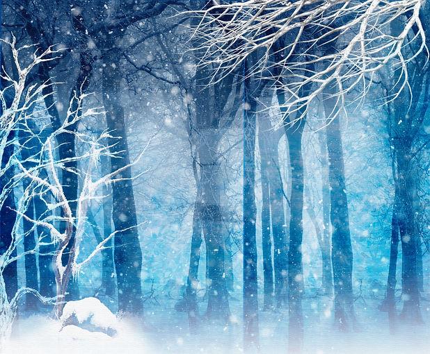 Snow Queen 21 image.jpg
