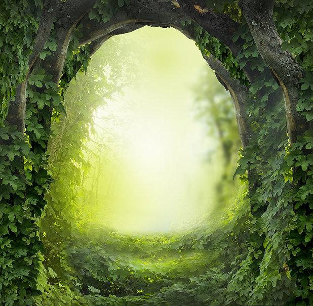 Secret Garden show image.jpg