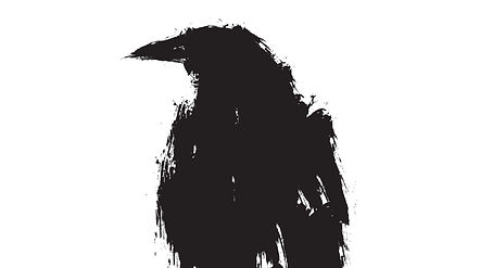 Raven%20Image_edited.jpg