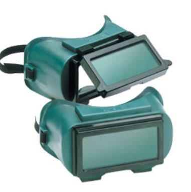 Gateway 1700 Series Goggle