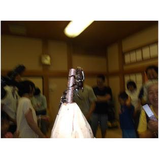 カブト虫相撲大会