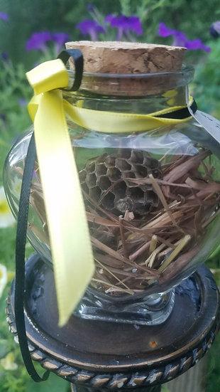 Bottle of Hornet's Nest-Common