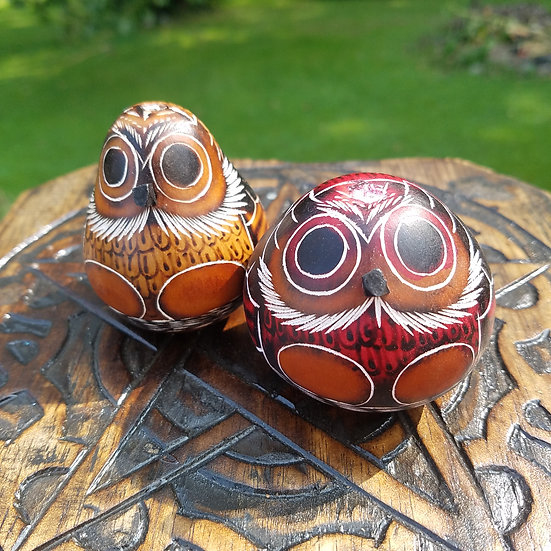 Owl Gourd Shakers/Rattles - Set of 2
