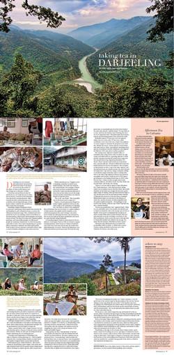 Tea Time, USA - Darjeeling