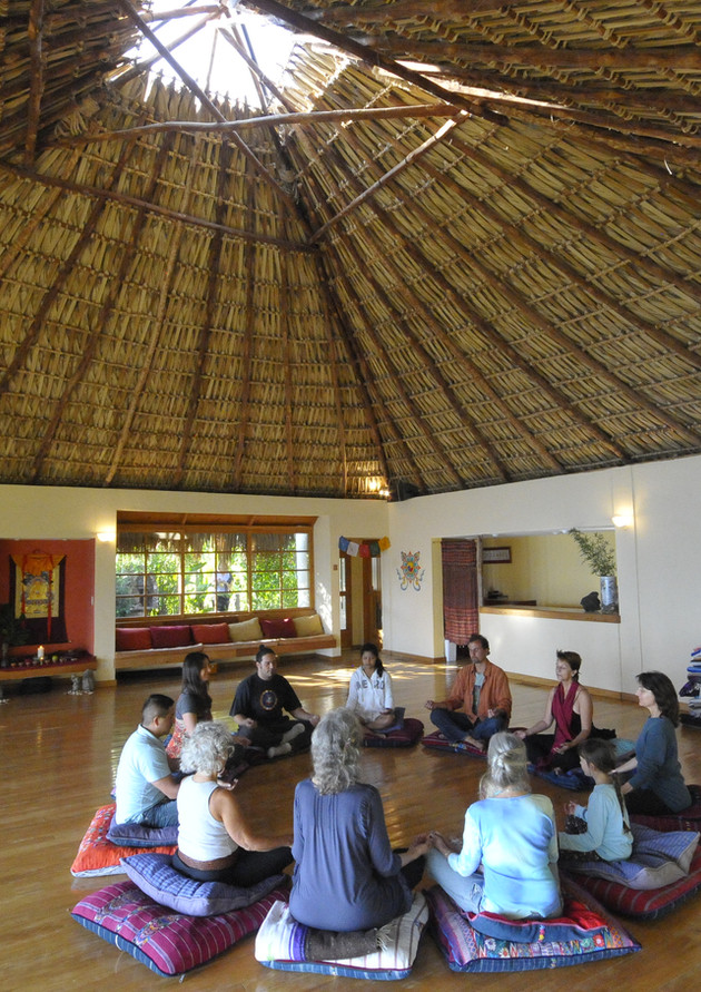 Meditation with people- tiger(2).JPG