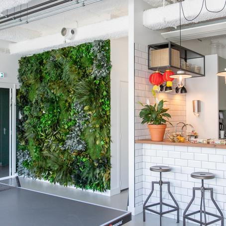 Urban Jungle op kantoor!