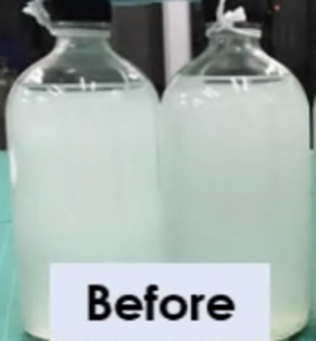 Sourwater before.png