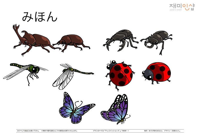 いきものぬりえ④(昆虫)