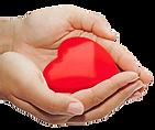 dona ora associazione alzheimer roma