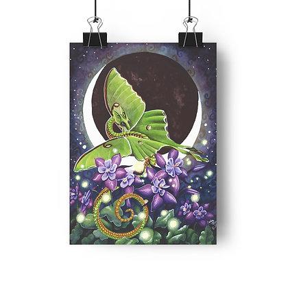 Luna Lights Giclée Art Print