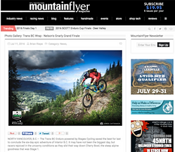 mountain flyer.png