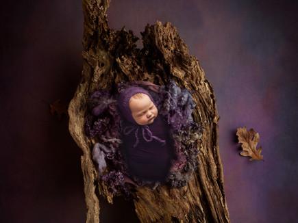 Allen Newborn Photography