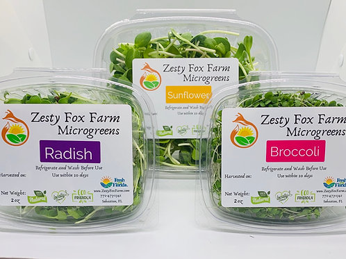 Microgreens and Shoot 3 for $15