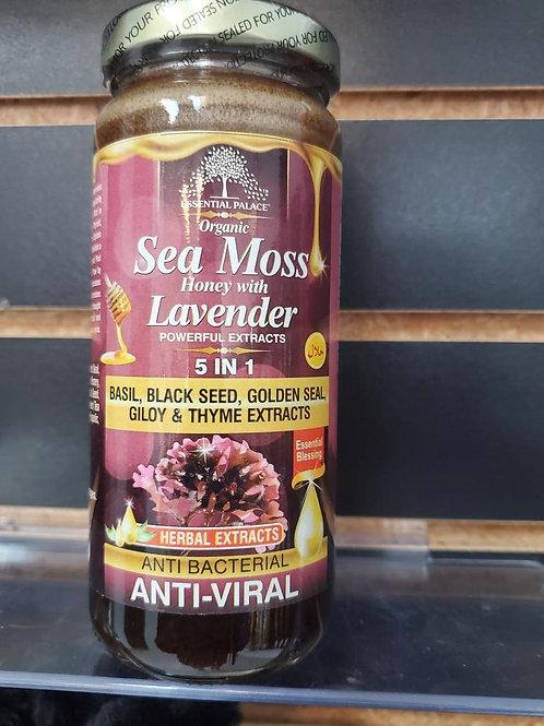 Organic Sea Moss Honey with Lavender