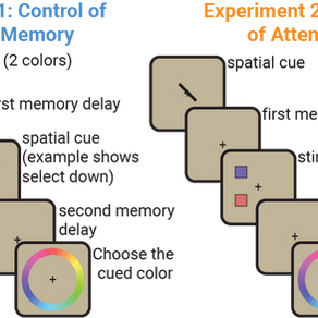 Shared mechanisms underlie the control of working memory and attention