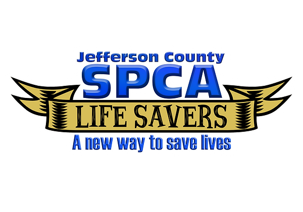 lifesavers logo 4.png