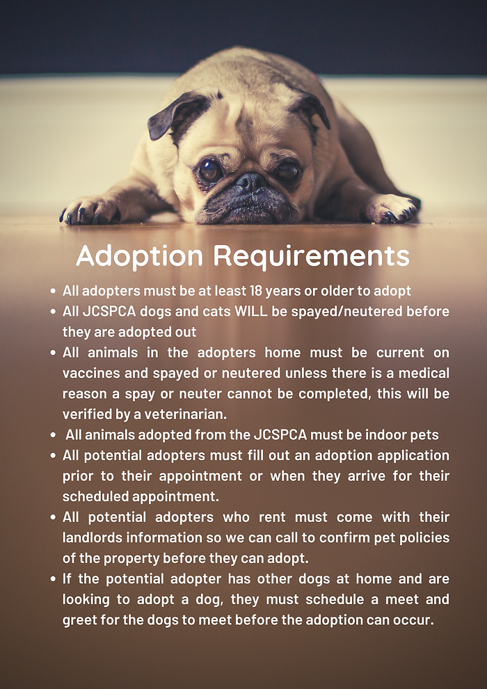 Light Brown Dog Animal Rescue Poster.png
