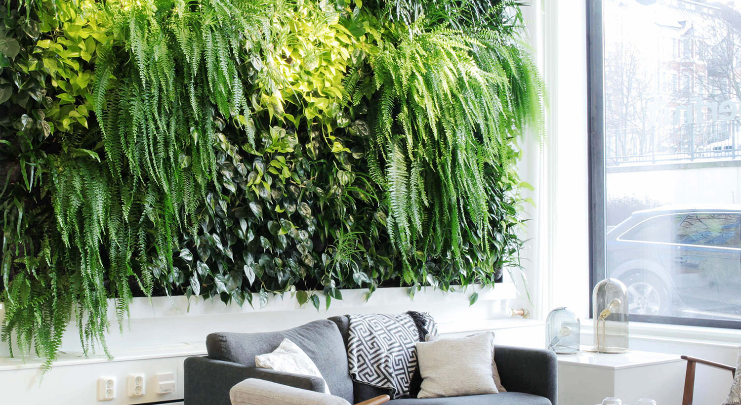 Hydroponic Green Wall Picture
