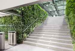 Major Green Wall Fit-Out