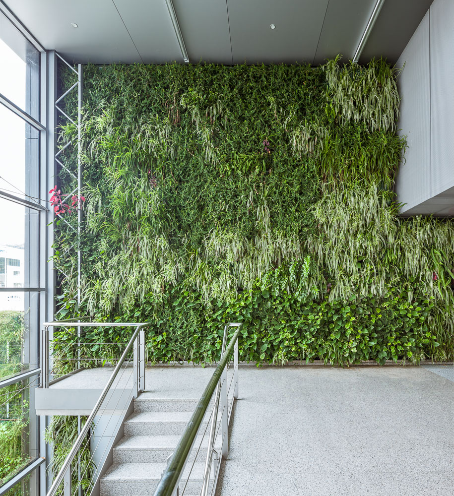 Indoor Green Wall