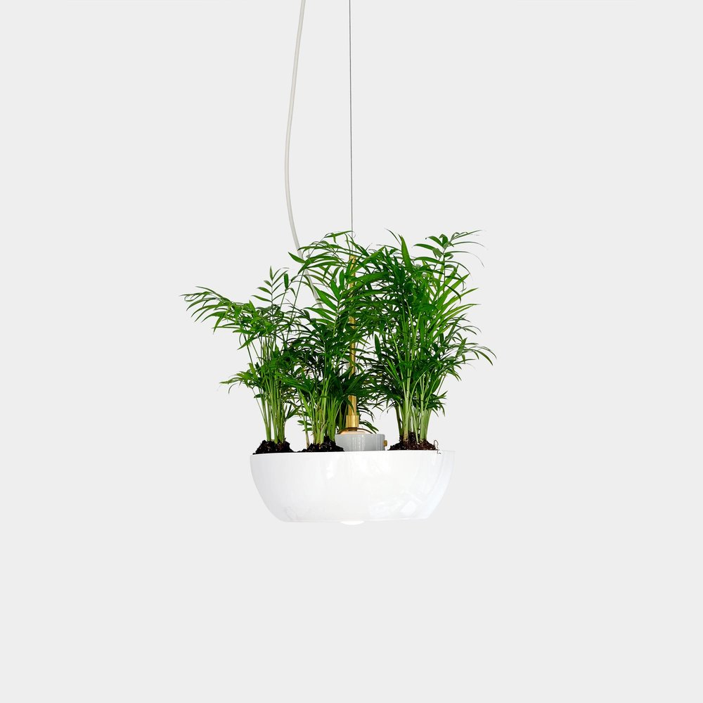 Babylon Well Pendant Light