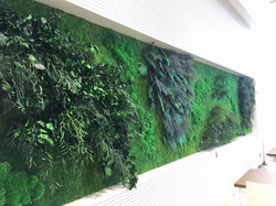 Framed Jungle Moss Wall