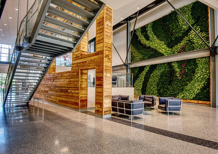 GSky® Plant Systems, Inc. Interior Living Green Wall - Double Height