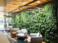 Hospitality Green Wall