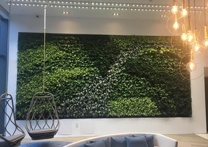 GSky® Plant Systems, Inc. Interior Living Green Wall - Framed