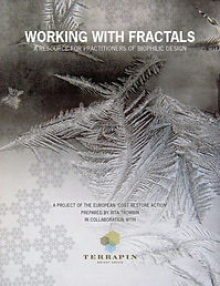 Working With Fractals Terrapin Bright Green