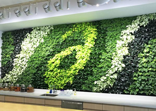 GSky® Plant Systems, Inc. Interior Living Green Wall