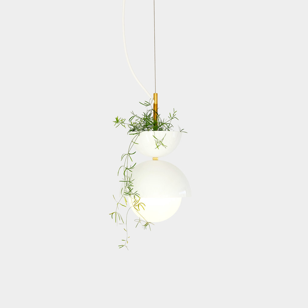 Babylon Pendant Light