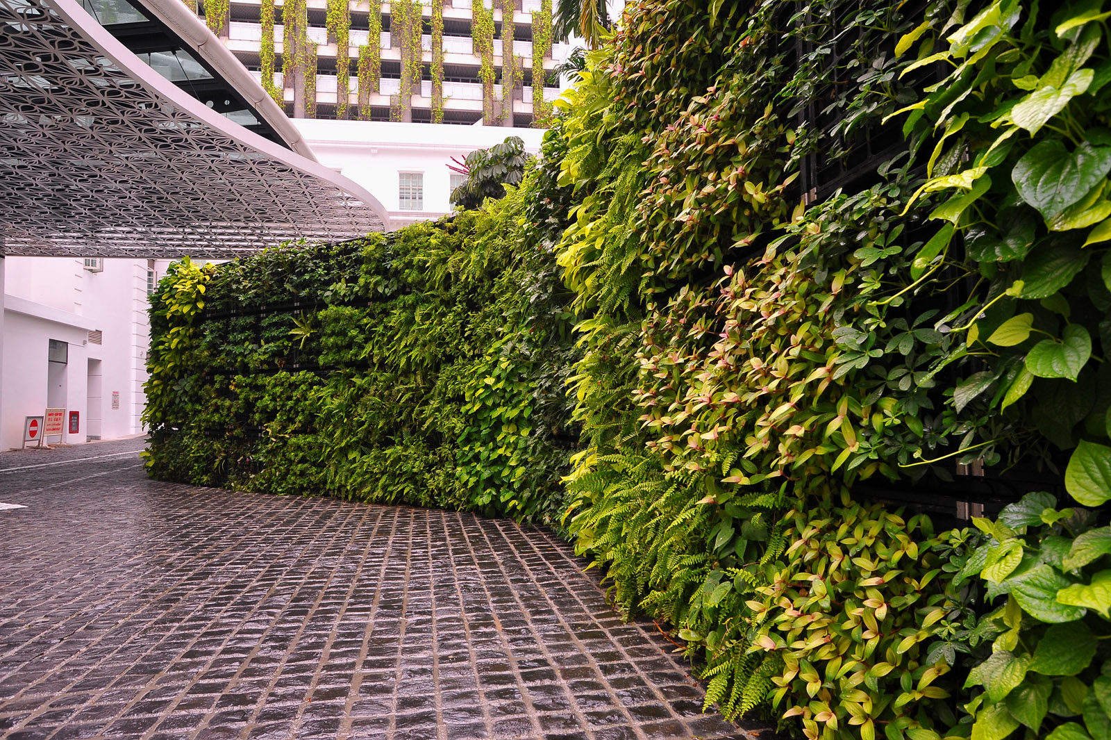 Curved Exterior Green Wall