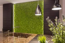 Minimal Moss Wall