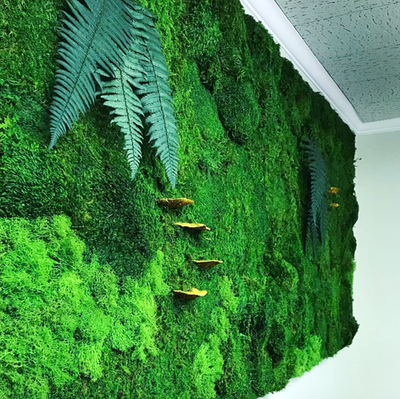 Preserved Moss Wall
