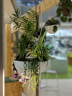 Hanging Plant Lighting