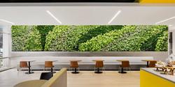GSky® Plant Systems, Inc.