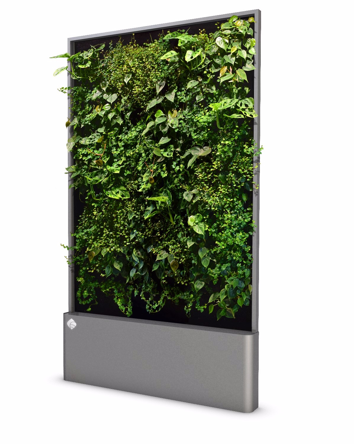 Hydroponic Green Wall - Large