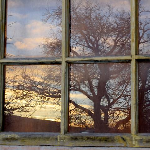 v okne.jpg