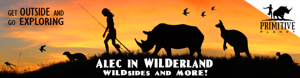 WILDerland Website Banner