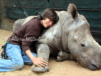 Endangered RHINO Facts and Resources