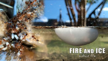 Fire and Ice (Short Film)