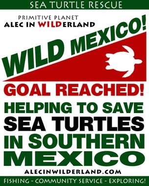 WILDerland - WILD Mexico
