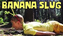 How to be a Banana Slug