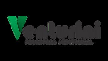 Logo Produtora Ventruini - Preto.png