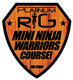 ninja warrior kdis platinum rig.png