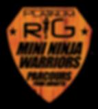 GO ninja warrior kdis platinum rig.png