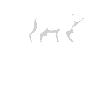 Logo_Boreale.png