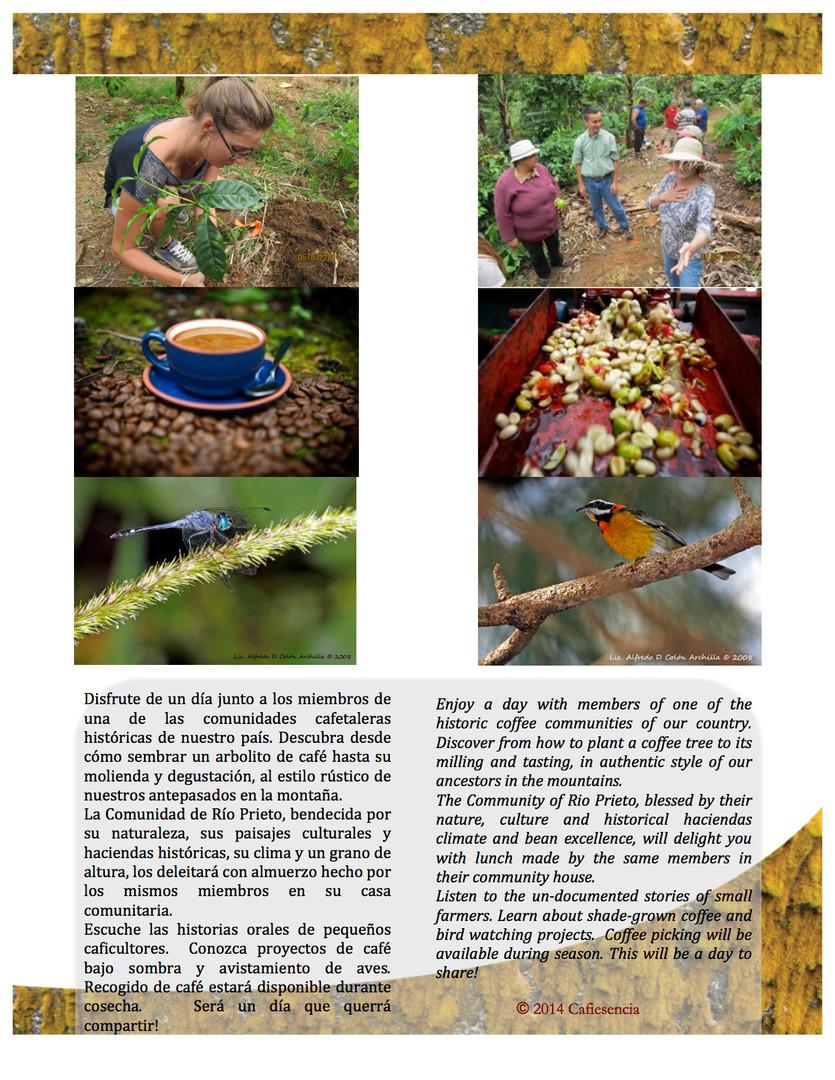 """brochure-community-tourism-p.2.docx"""".jpg"""