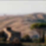 Palagione Foldertitelfoto - Rocca mit Pi